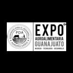 42.EXPO